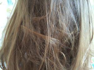 der Kampf gegen verknotete Haare